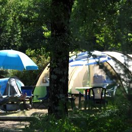 Camping à Bisarrosse : emplacement