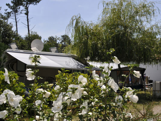 camping biscarrosse pas cher