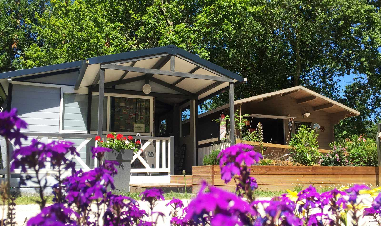 camping familial biscarrosse